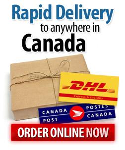 Buy-Size-Genetics-Canada-Now