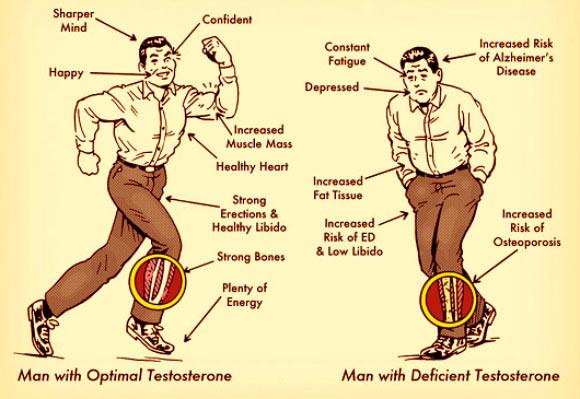 image_1418-testosterone